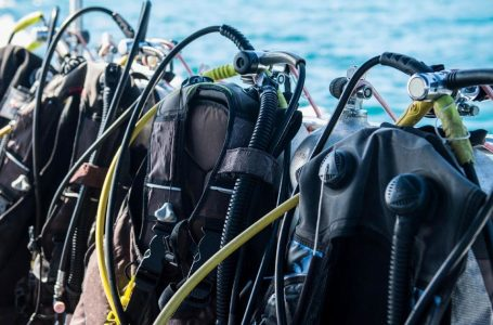 What To Know Before Diving
